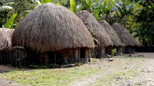 Five Types of Honai; Traditional Dani House at Baliem Valley, Papua